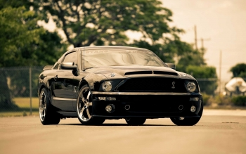 Vehicles - Ford Mustang Cobra Jet Wallpapers and Backgrounds ID : 534084