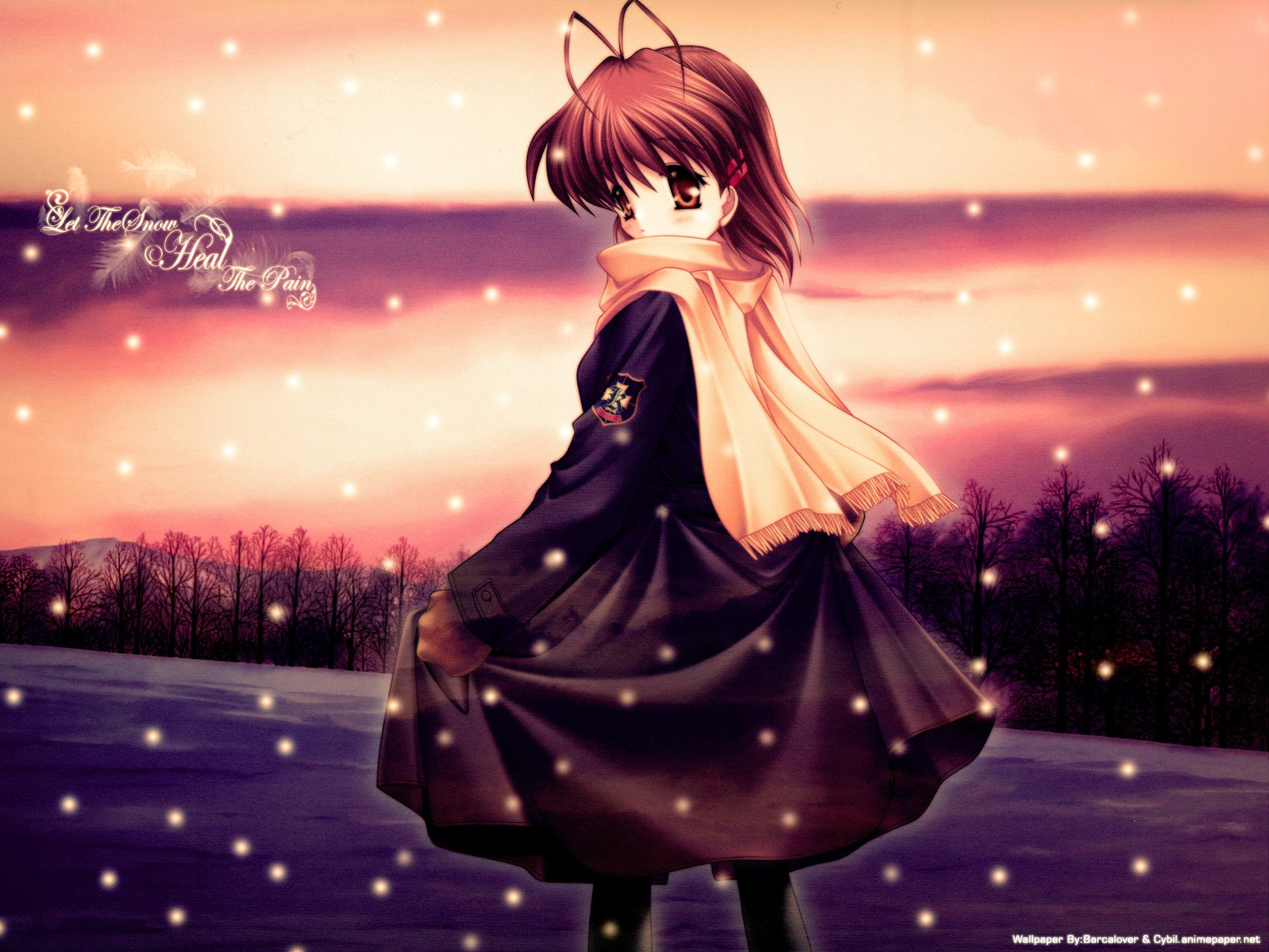 Wallpapers ID:535730