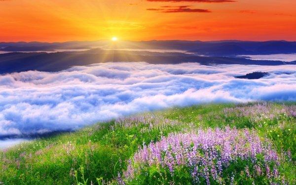 Earth Sunset Cloud Meadow Landscape HD Wallpaper | Background Image