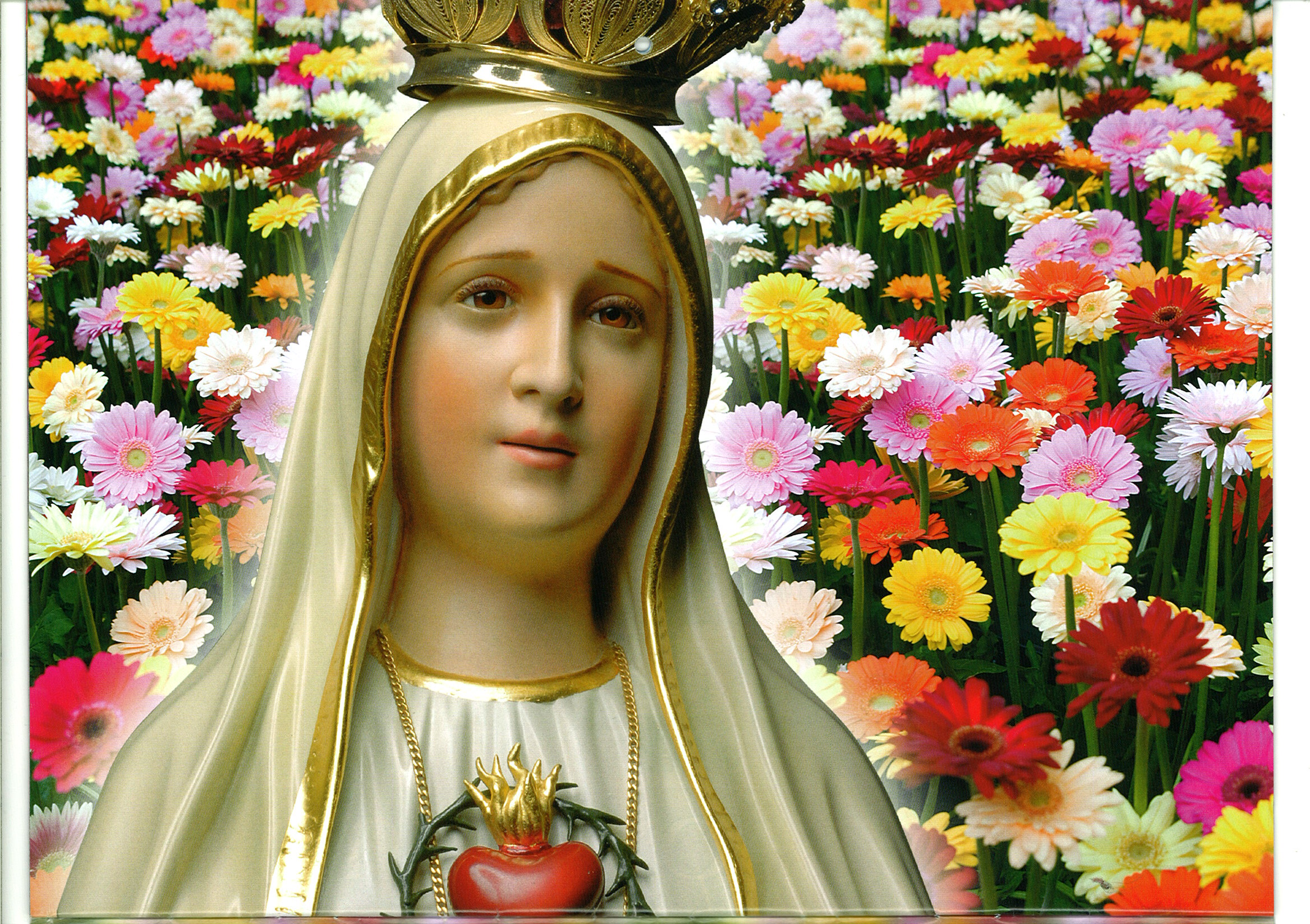 our lady of fatima wallpaper