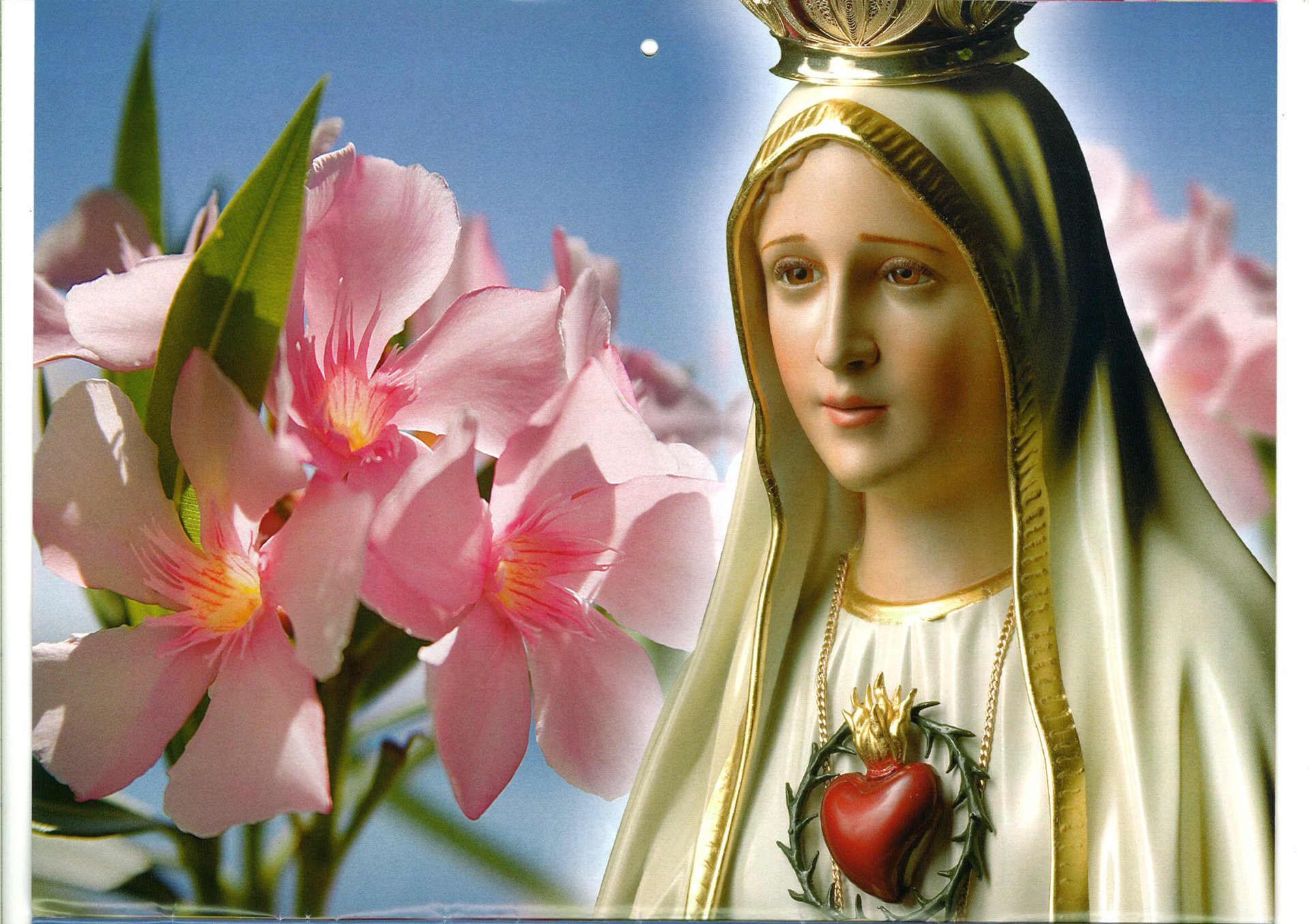 8 Our Lady Of Fatima Hd Wallpapers Background Images Wallpaper