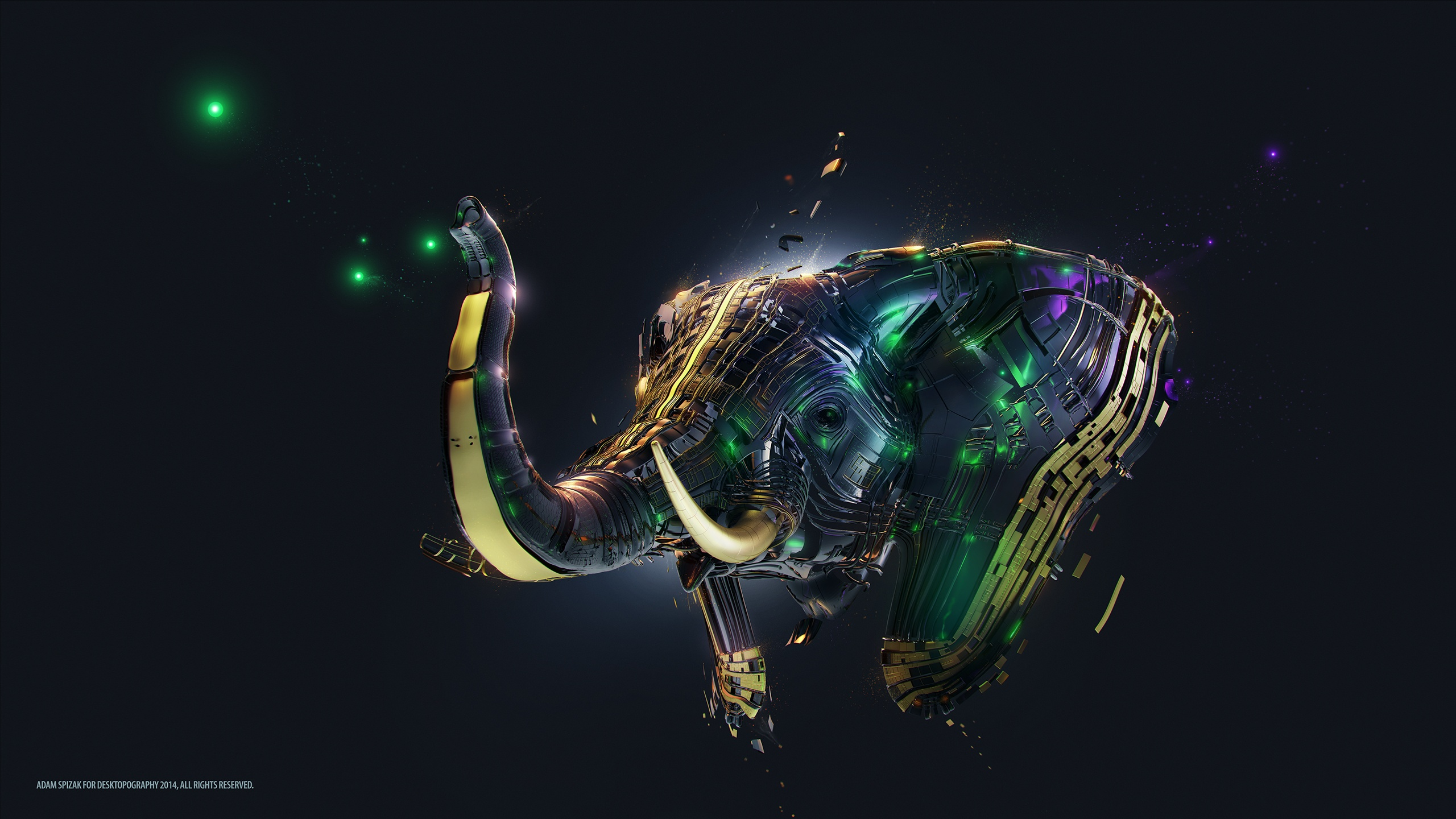9 Elephant HD Wallpapers Backgrounds Wallpaper Abyss
