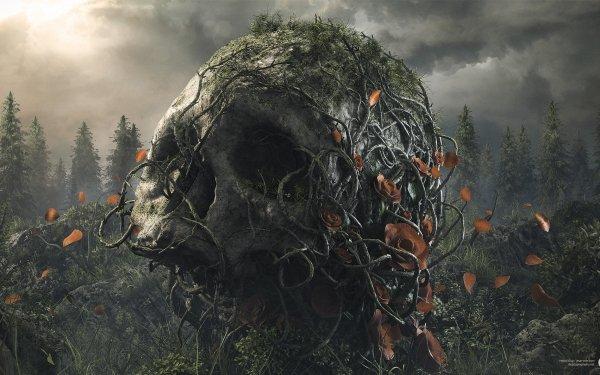 Artistic Desktopography Skull Dark HD Wallpaper   Background Image