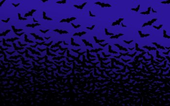 Animalia - Bat Wallpapers and Backgrounds ID : 55991