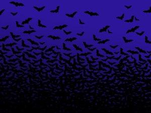 Preview Animal - Bat Art