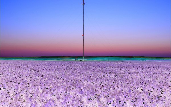 Photography Scenic Tower Infrared Landscape HD Wallpaper   Background Image