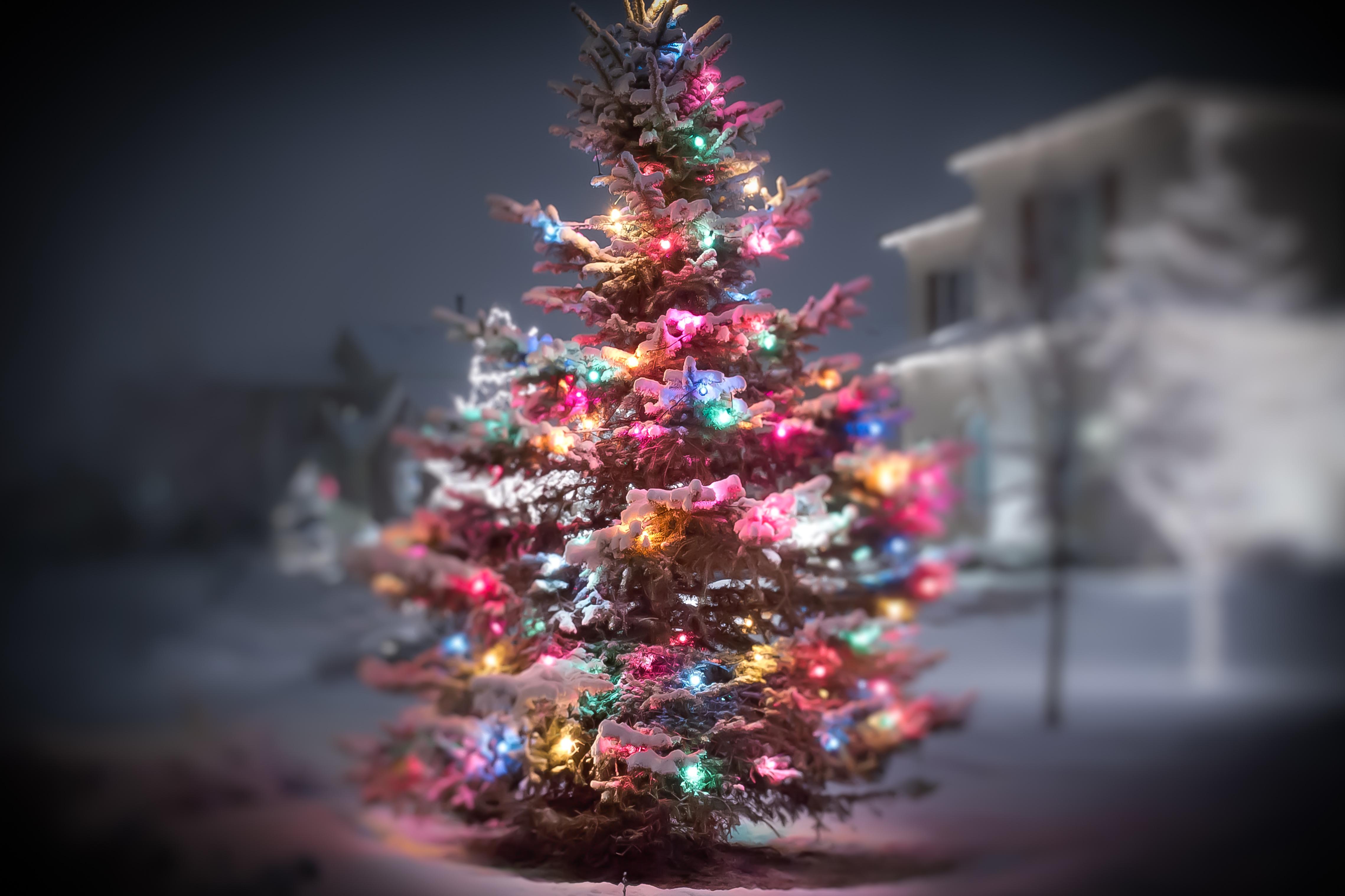 Christmas 4k Ultra HD Wallpaper | Background Image ...