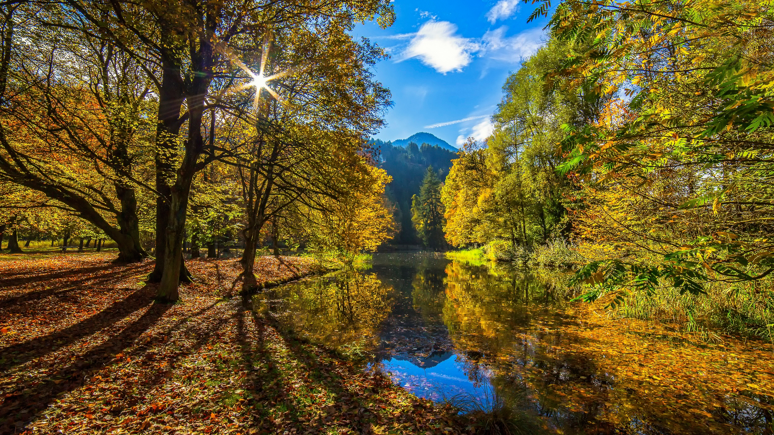 Autumn sun hd wallpaper hintergrund 2500x1406 id for Fond ecran foret