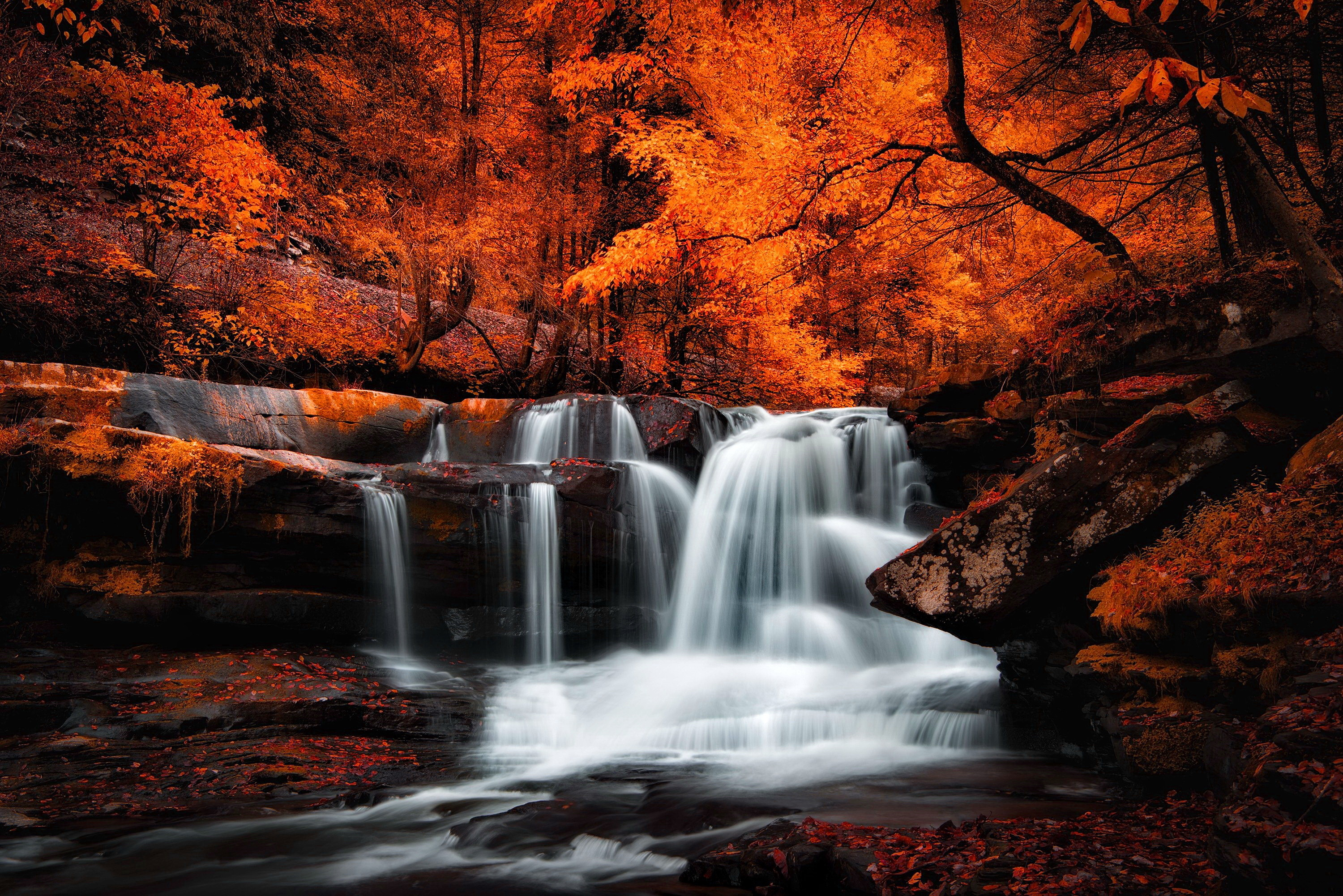 Waterfall Full HD Wallpaper and Background | 3000x2002 ...