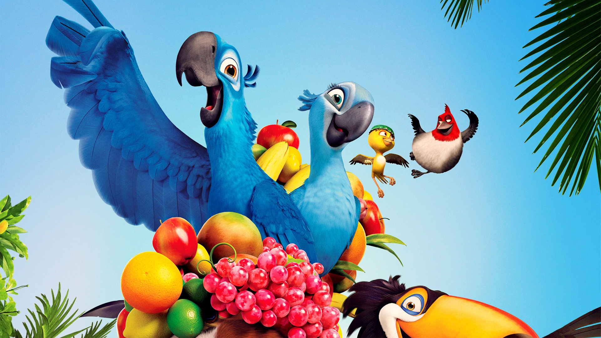 Free HD Rio Movie Wallpapers Desktop Backgrounds
