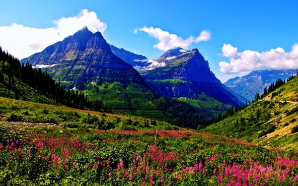 Earth Landscape Mountain Spring Nature Flower HD Wallpaper   Background Image