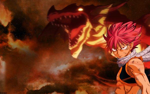 Anime Fairy Tail Natsu Dragneel Dragon Igneel HD Wallpaper | Background Image