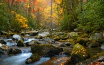 Earth - Stream Wallpapers and Backgrounds ID : 60263