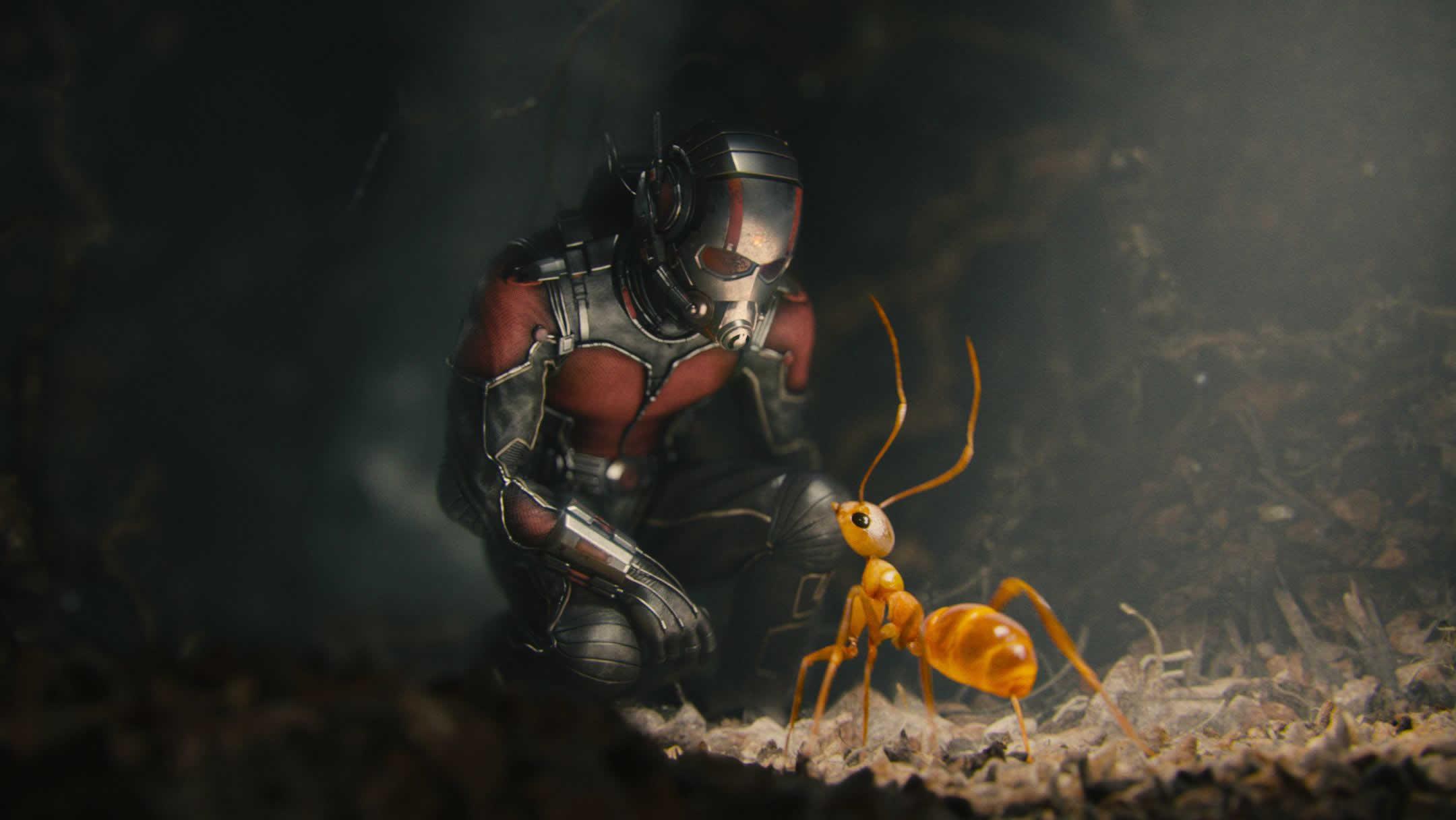 Image result for ant man stills