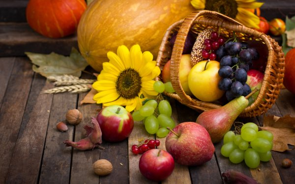 Food Still Life Fall Harvest Apple Pear Grapes Sunflower HD Wallpaper | Background Image