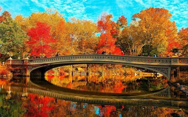 Man Made Bridge Bridges Fall Tree Reflection Bow Bridge Central Park Manhattan New York HD Wallpaper | Background Image