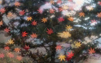 HD Wallpaper | Background ID:668126
