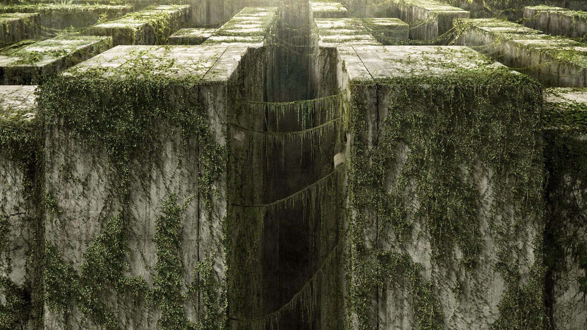 Image Result For The Maze Runner