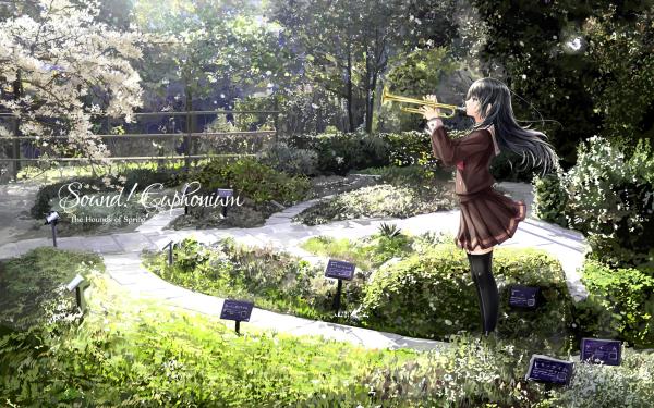 Anime Sound! Euphonium Reina Kousaka HD Wallpaper | Background Image