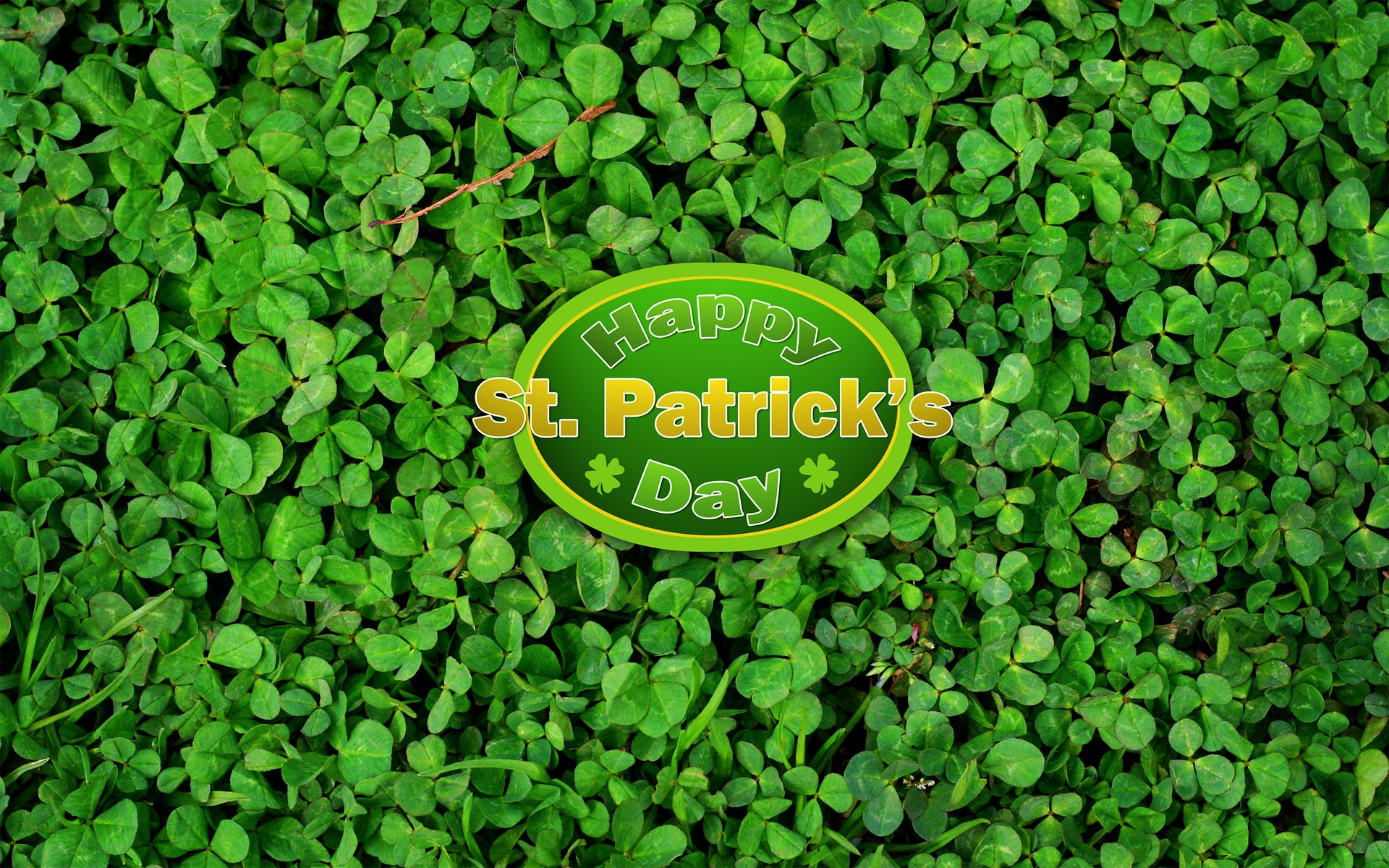 Holiday - St. Patrick's Day  Clover Green Wallpaper