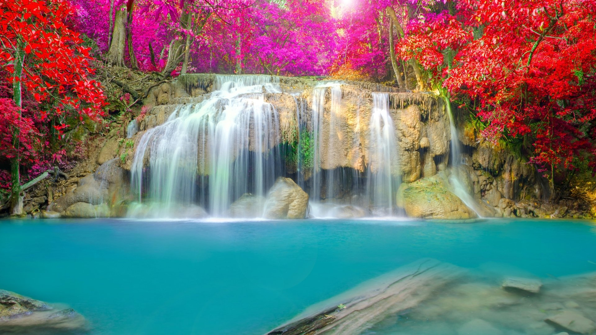 Wallpapers ID:682311