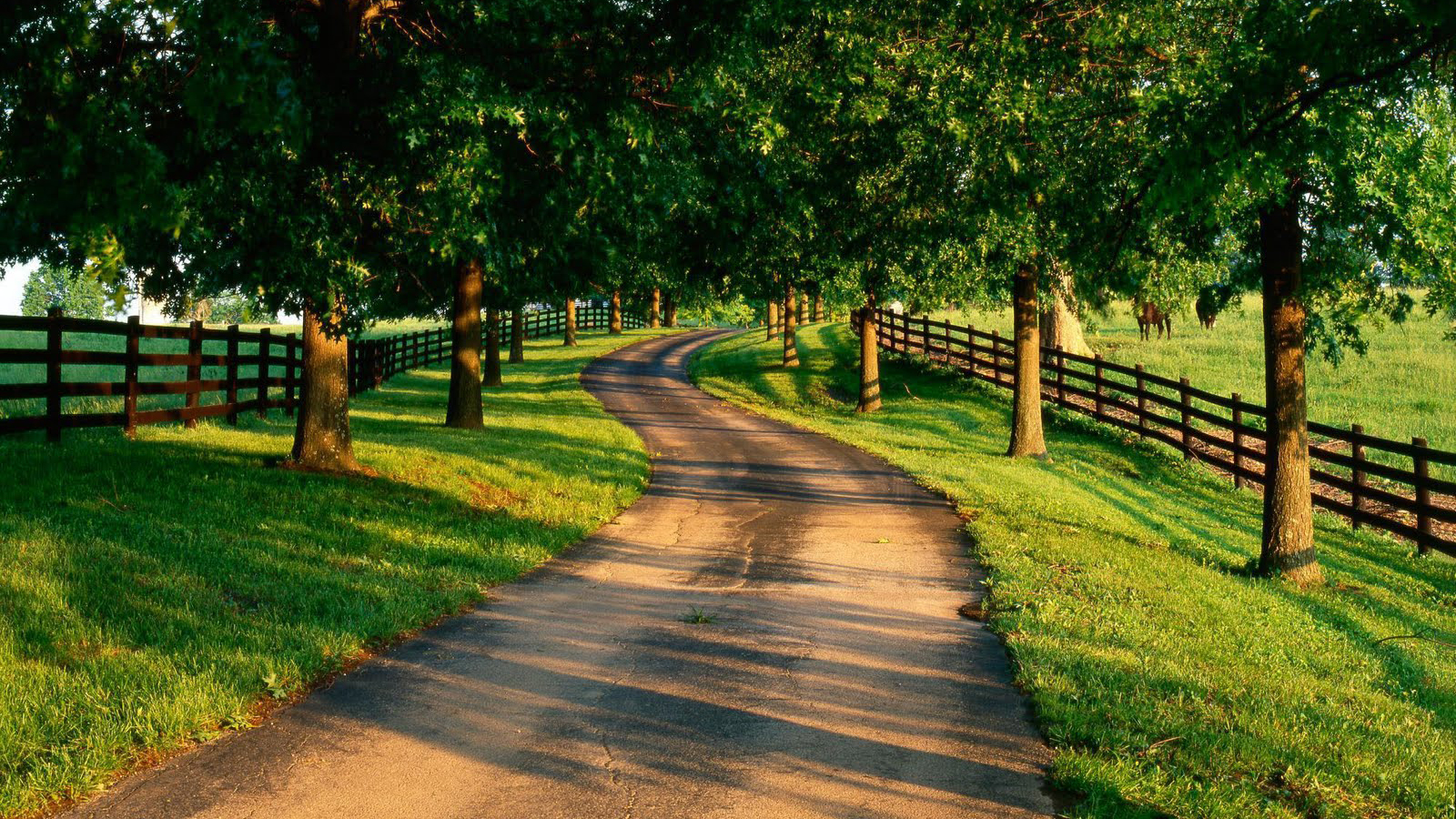 Road In The Country Wallpaper And Background Image