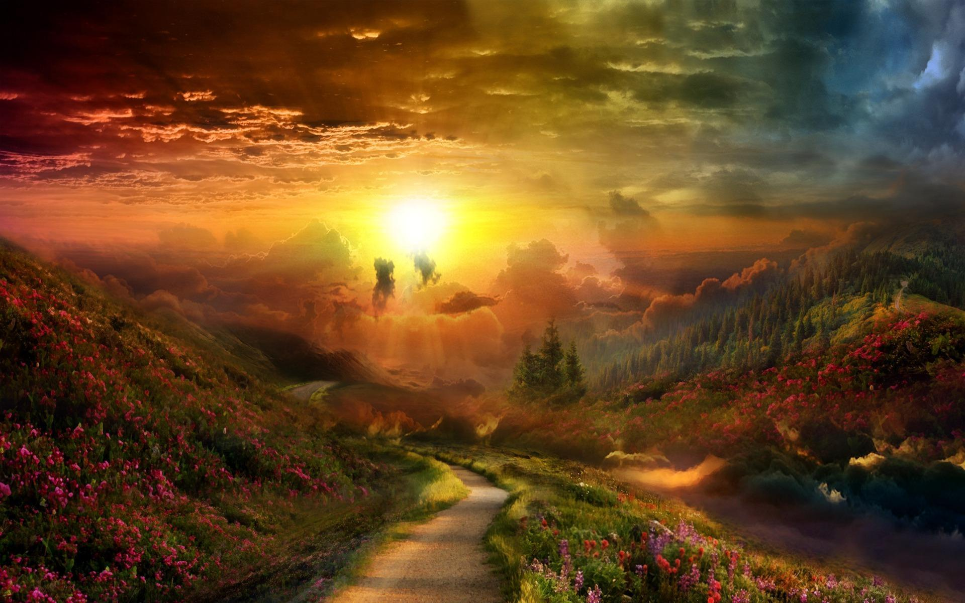 A New Beginning Hd Wallpaper Background Image 1920x1200 Id
