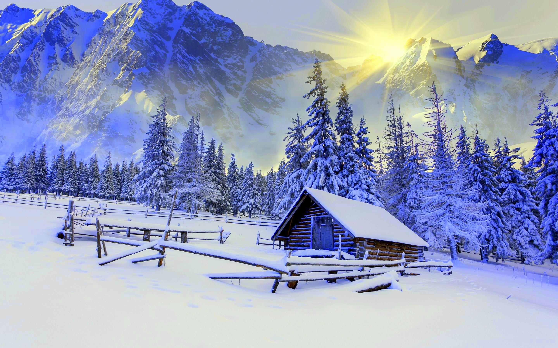Winter Landscape Fondo De Pantalla Hd Fondo De Escritorio