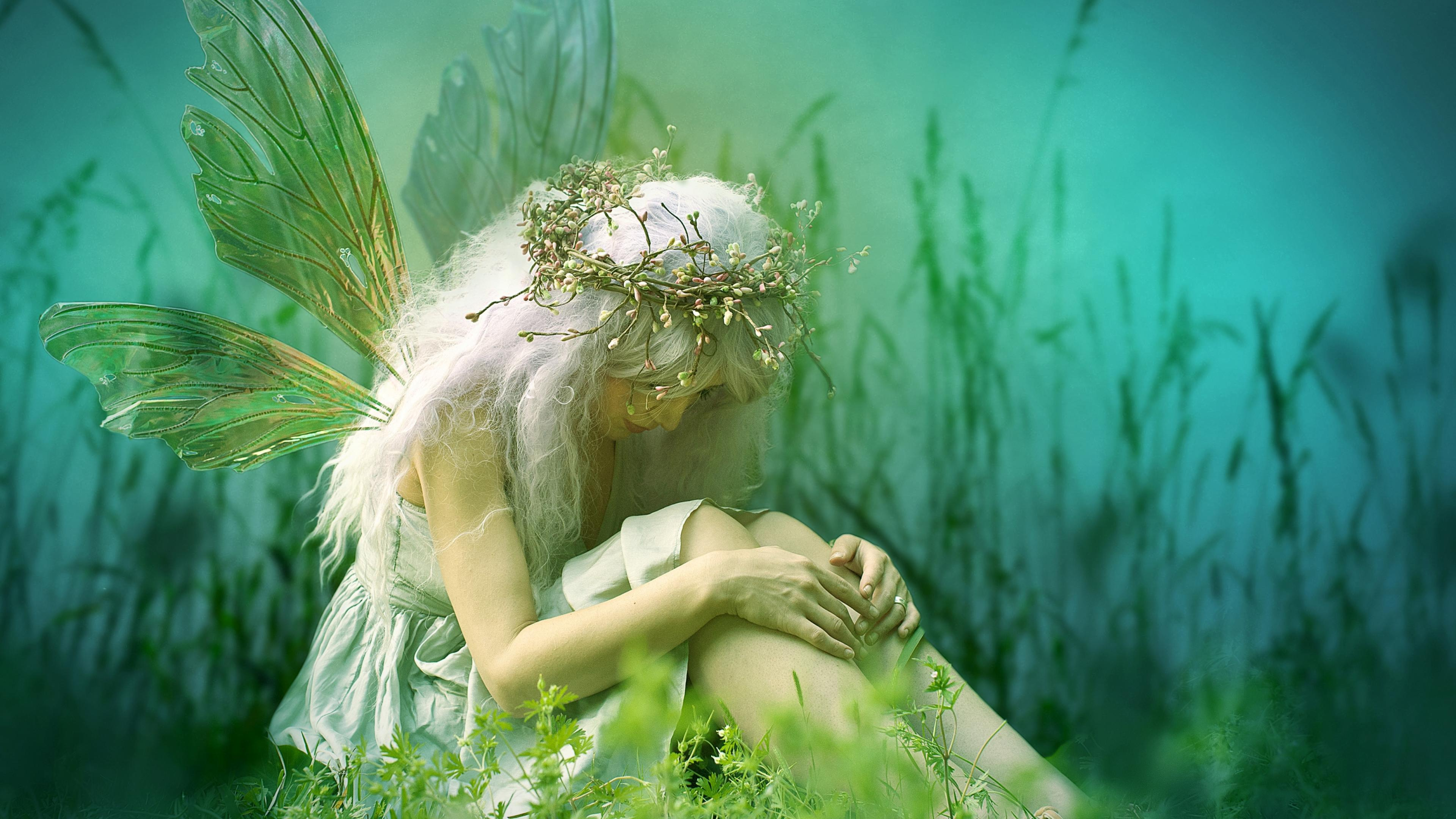 14 4k Ultra Hd Fairy Wallpapers Background Images