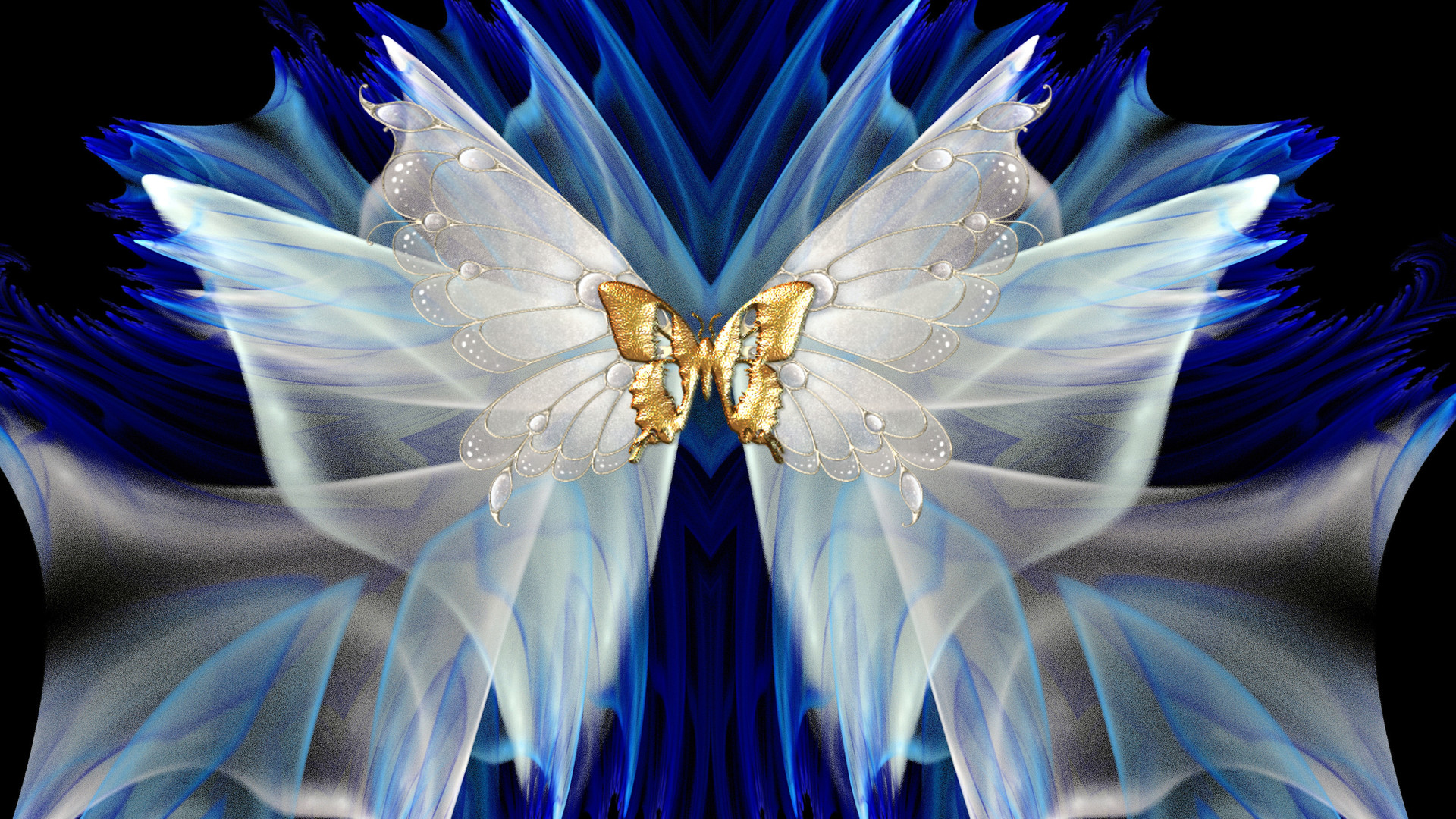 White And Dgold Butterfly Hd Wallpaper Background Image