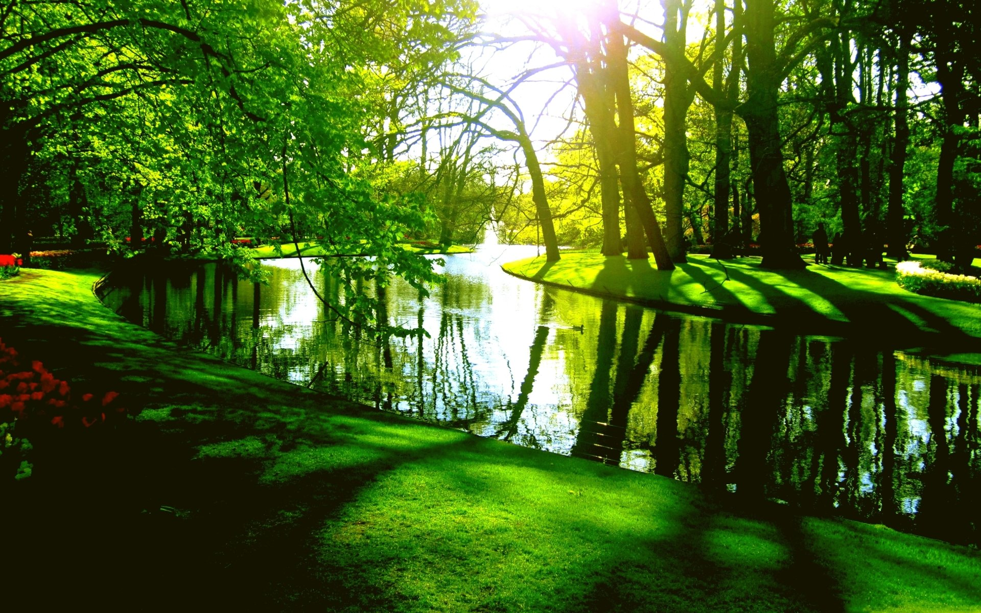 Green park in springtime hd wallpaper hintergrund - Green nature wallpaper full hd ...