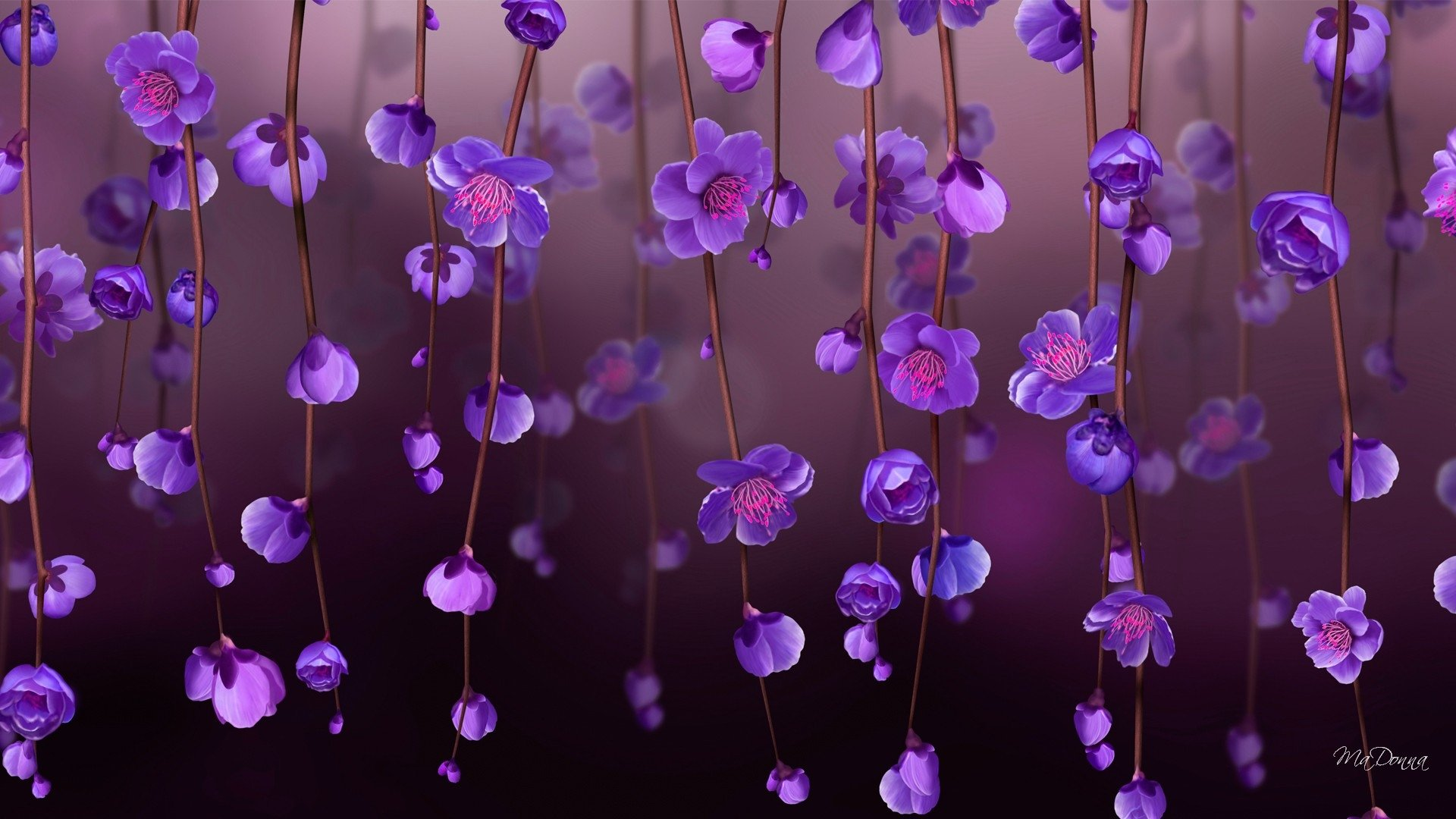 Earth - Blossom  Artistic Flower Purple Flower Vine Wallpaper