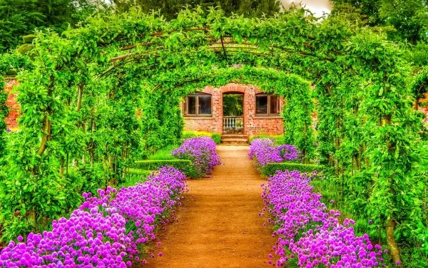 Earth Spring Flower Garden Building Bush Purple Flower Greenery HD Wallpaper | Background Image