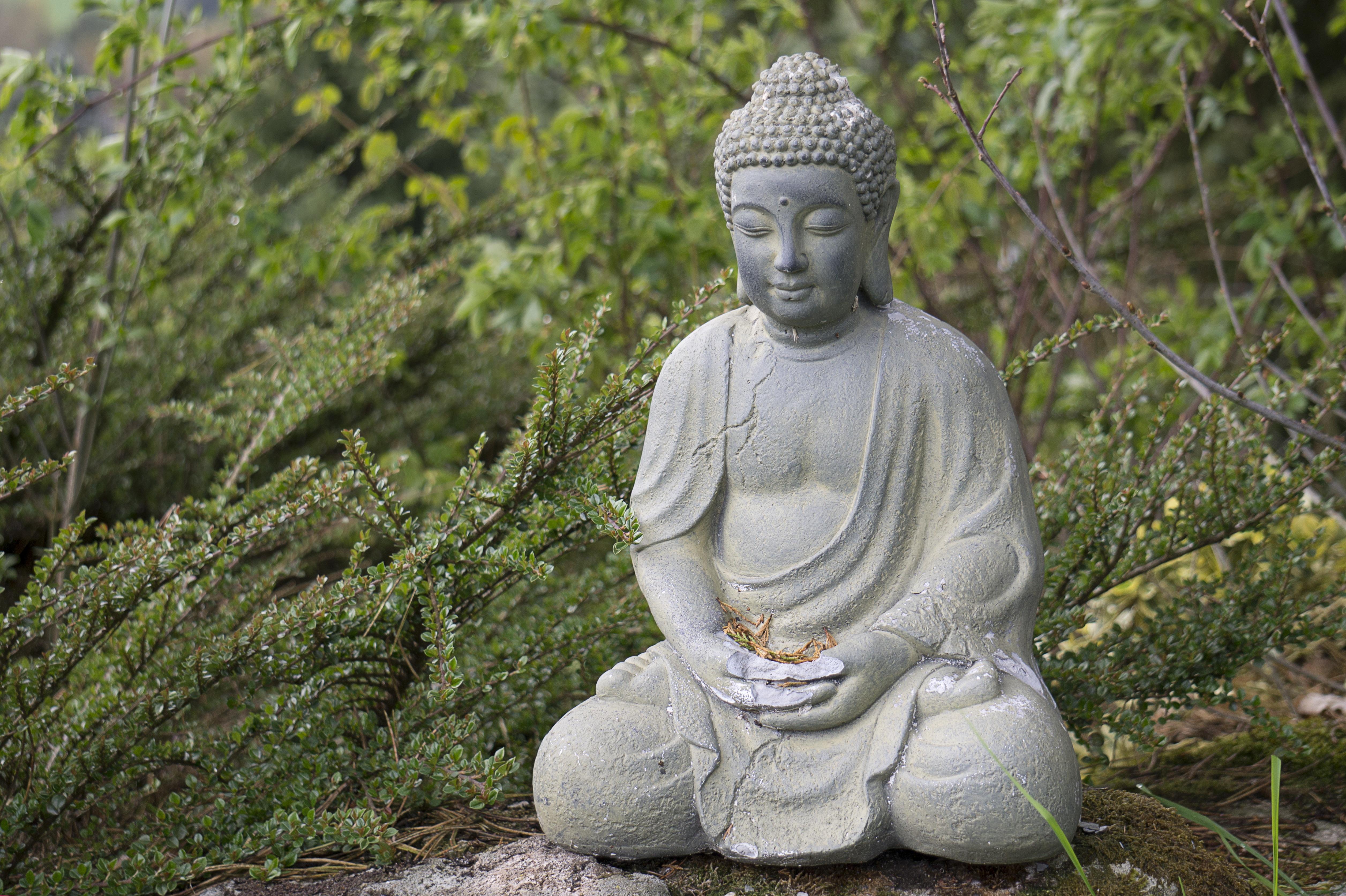 Garden buddhist single men