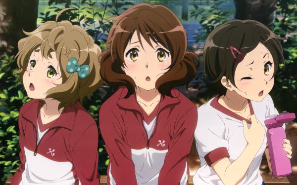 Anime Sound! Euphonium Sapphire Kawashima Kumiko Oumae Hazuki Katou HD Wallpaper | Background Image