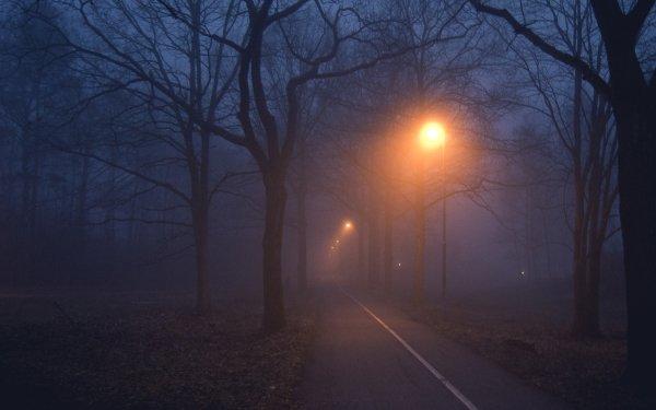 Hecho por el hombre Carretera Niebla Noche Street Light Fondo de pantalla HD | Fondo de Escritorio