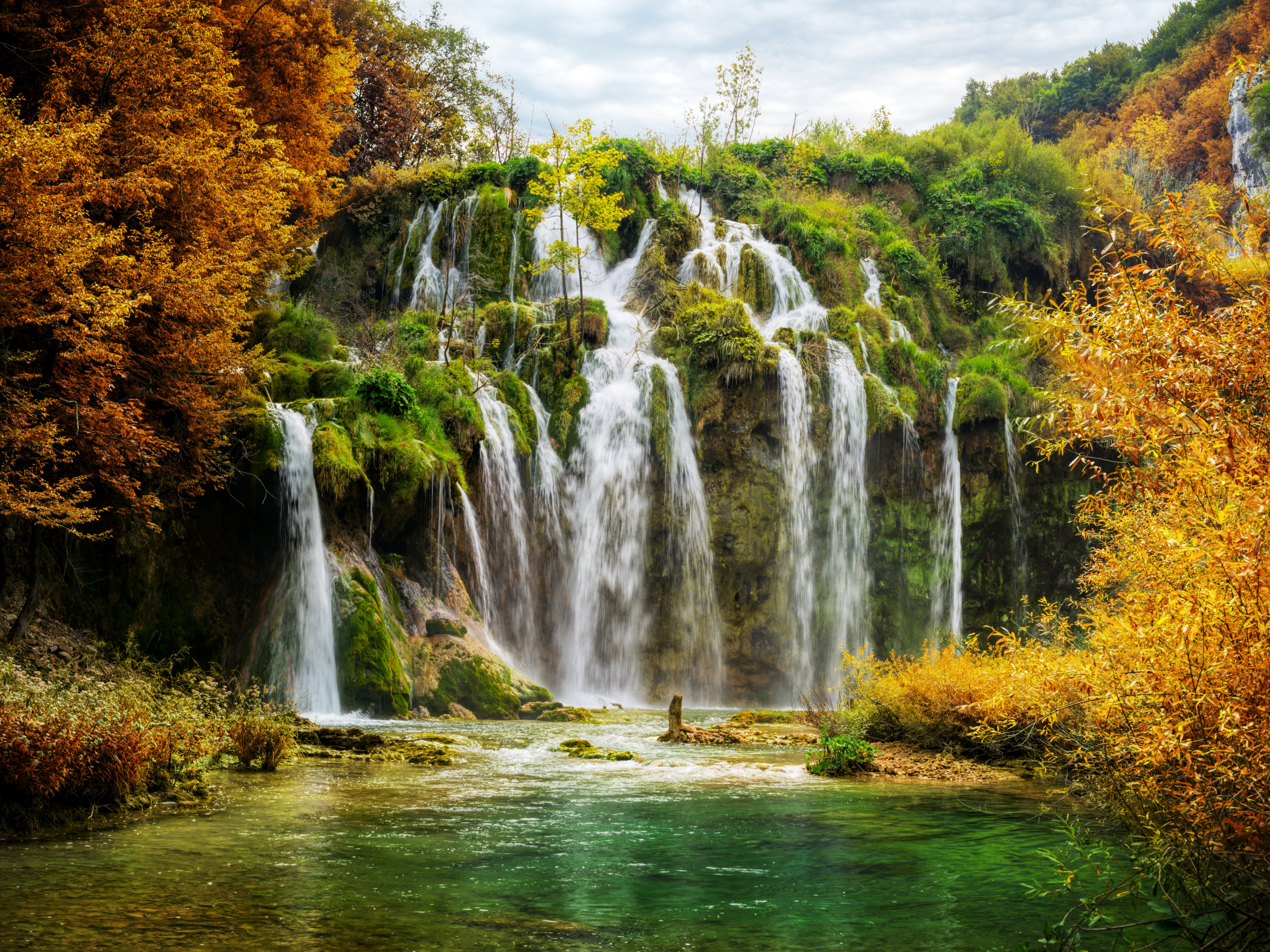 Forest Waterfall 5k Retina Ultra Hd ţ�纸 And ȃ�景 5616x4212