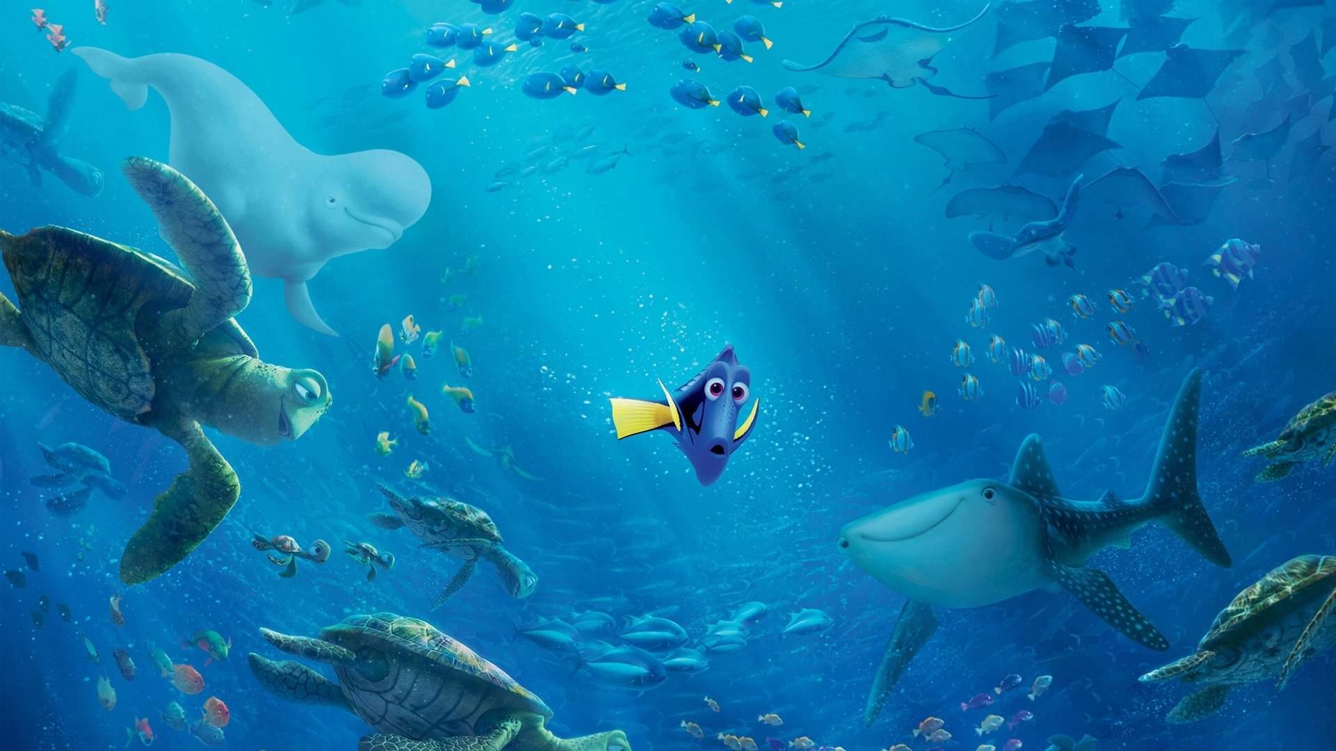 Dory From Finding HD Wallpaper