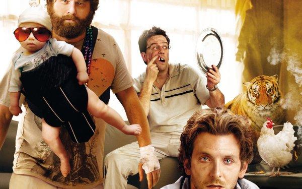 Movie The Hangover Bradley Cooper Zach Galifianakis Ed Helms HD Wallpaper | Background Image
