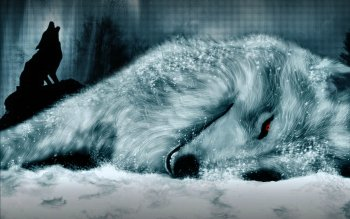 Animal - Wolf Wallpapers and Backgrounds ID : 71161