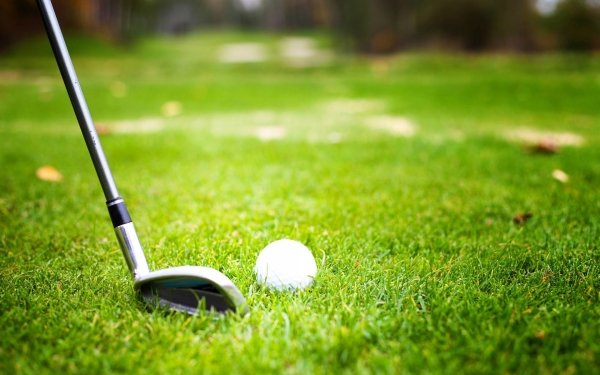 Sports Golf Grass Close-Up HD Wallpaper | Background Image