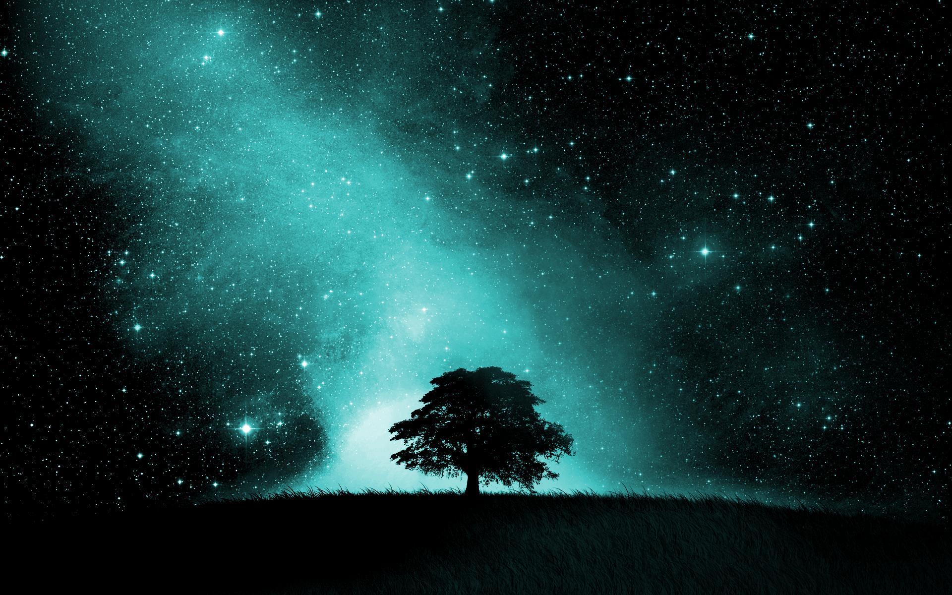 Starry Night Sky Computer Wallpapers, Desktop Backgrounds  1920x1200  ID:71...