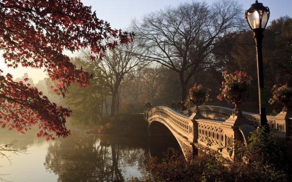 Man Made Central Park New York Bridge Foliage Fall Bow Bridge HD Wallpaper | Background Image