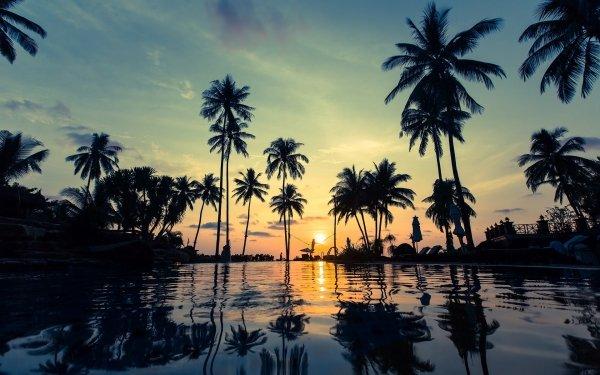 Photography Sunset Palm Tree Water Reflection Resort HD Wallpaper   Background Image