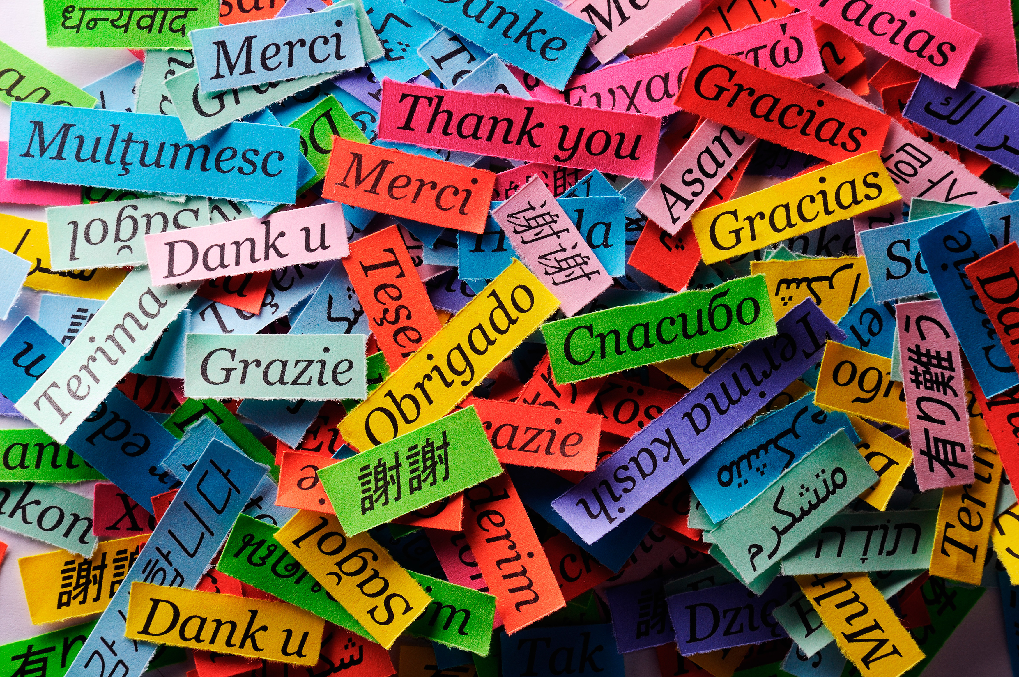 Thank You In Different Languages HD Wallpaper