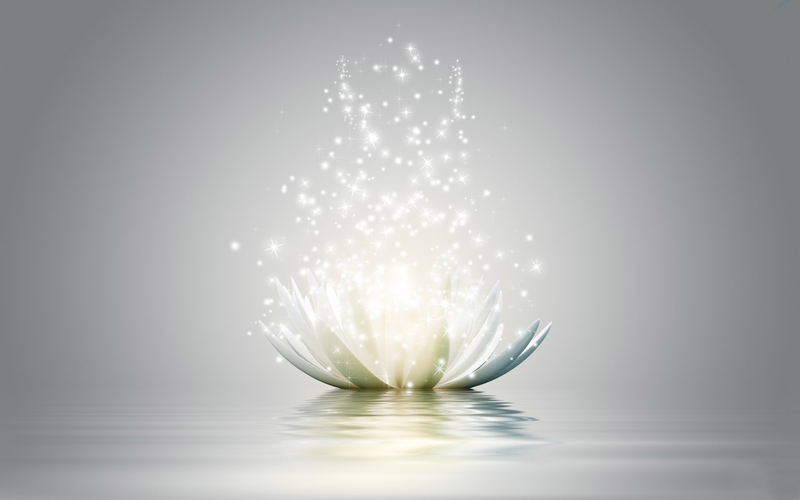 Lotus flower hd wallpaper background image 2560x1600 id727579 lotus flower hd wallpaper background image 2560x1600 id727579 wallpaper abyss izmirmasajfo