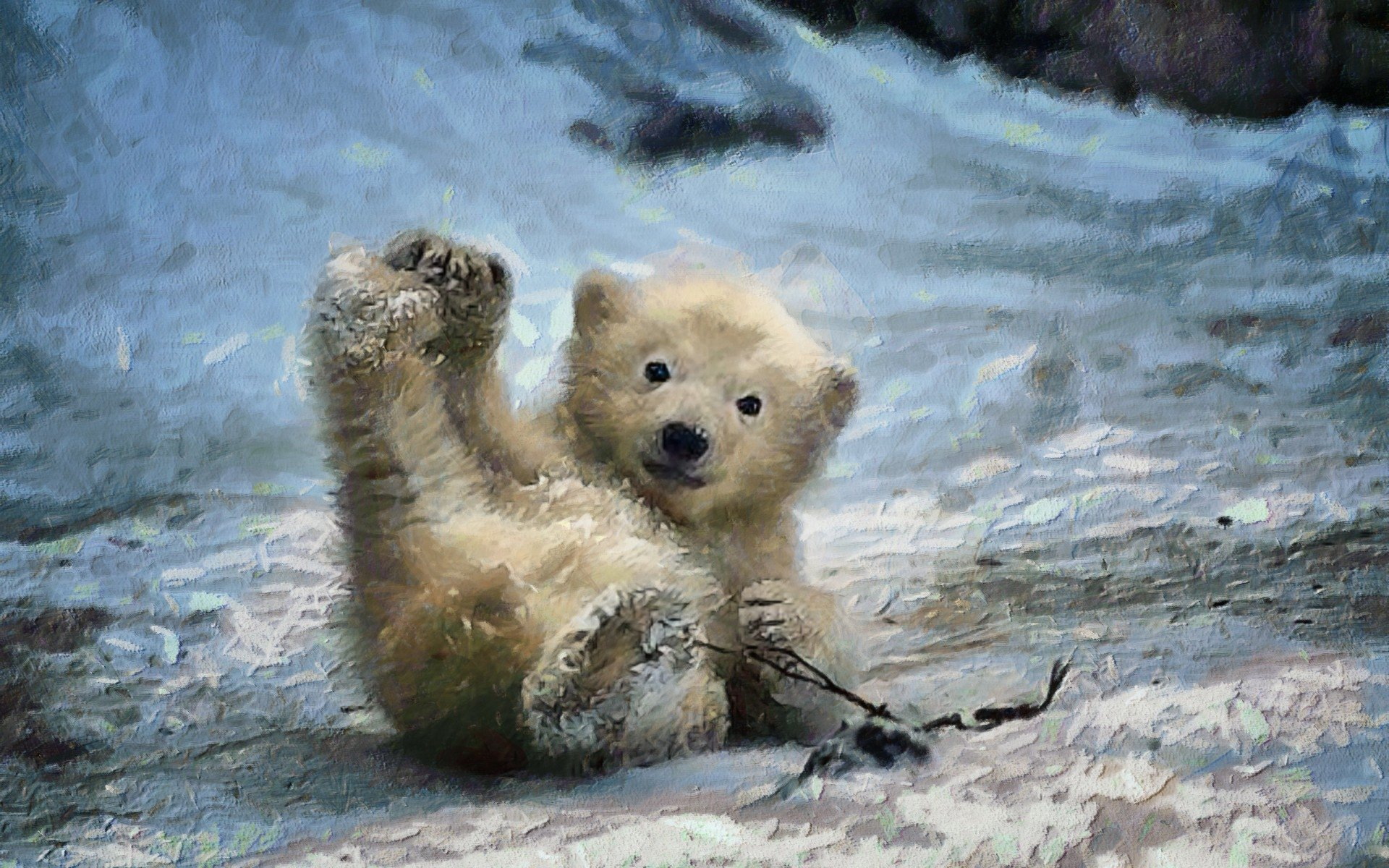 baby polar bear hd wallpaper background image. Black Bedroom Furniture Sets. Home Design Ideas