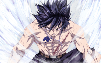 236 Gray Fullbuster HD Wallpapers