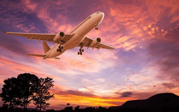 Vehicles Aircraft Passenger Plane Sunset Sky HD Wallpaper | Background Image