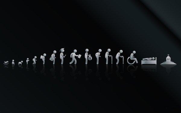Humor Evolution Life HD Wallpaper | Background Image